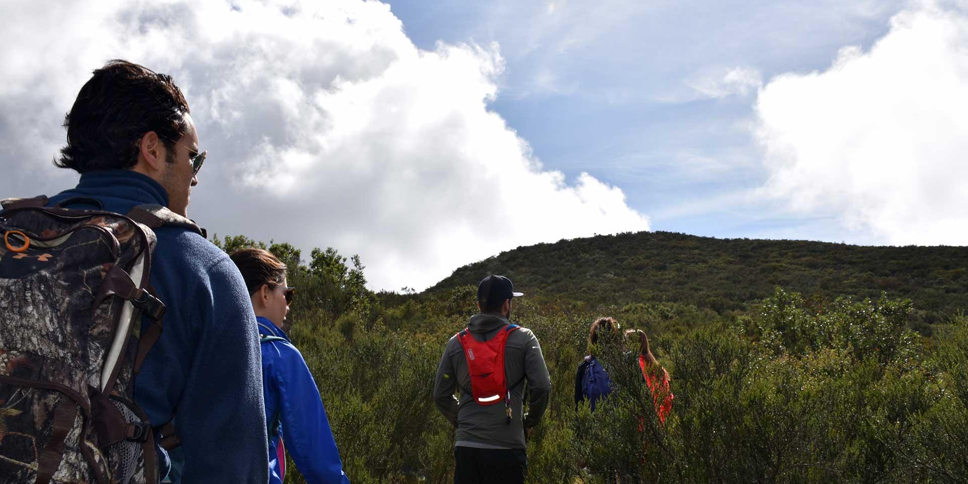 hiking baja california
