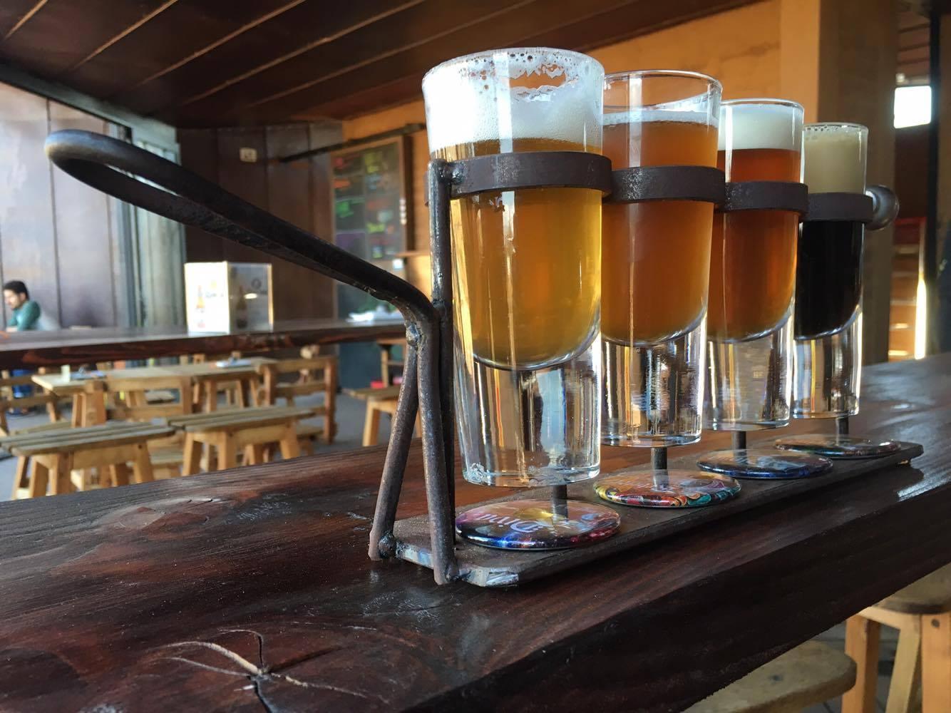 Cervecería Media Perra