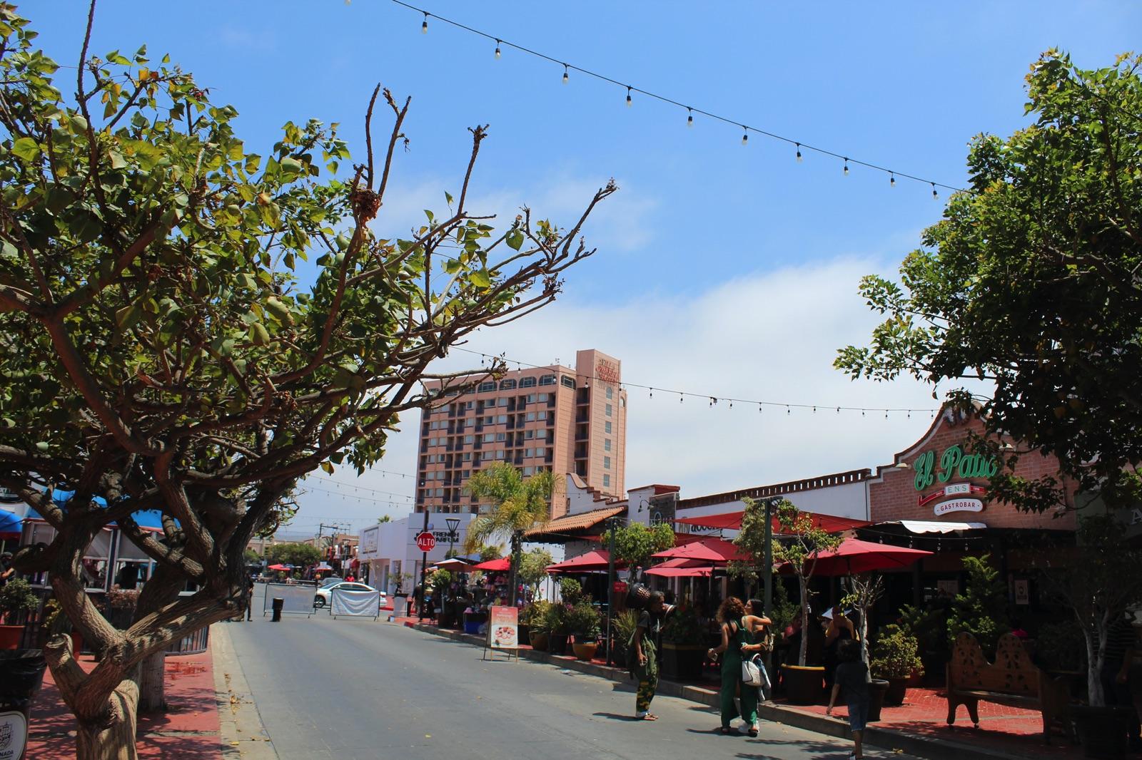 Cosas que debes probar en tus siguientes vacaciones en Ensenada