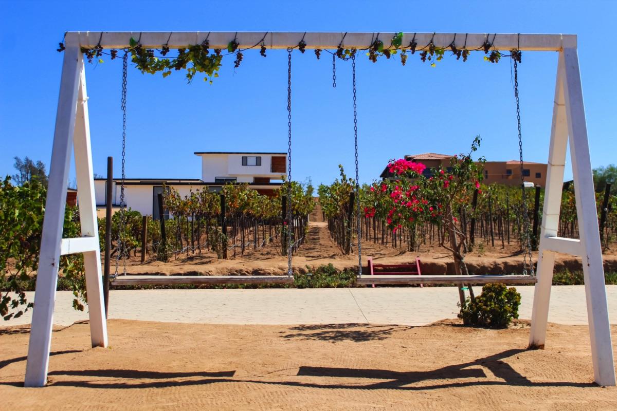 Ludica Valle, Ensenada 06